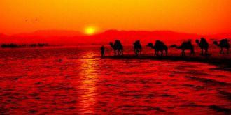 生態民勤·大漠之旅:甘肅民勤美景欣賞