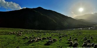 祁连山下的牧歌(高清组图)