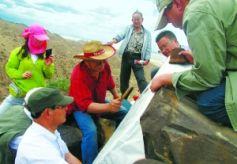 甘肃景泰姜窝子沟岩画:戈壁荒原上的古西羌图腾