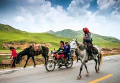 """国家旅游局""""丝绸之路旅游年""""助推甘肃旅游产业"""