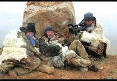 中国雪豹纪录片第一人王鹏:将用十年用镜头追踪雪豹