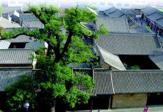 甘肃天水市胡氏民居:明代民居古建筑