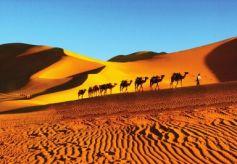 丝绸之路国际旅游节奏响丝路旅游最美乐章让甘肃兰州与世界同步起