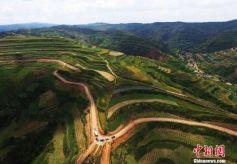 甘肃庄浪百万亩梯田 黄土高原上的生态奇观
