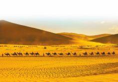 游客在鸣沙山月牙泉景区骑骆驼观光游览