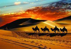 甘肃旅游上半年接待游客8730万人次 实现旅游收入533亿元