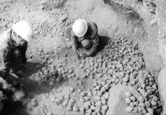 甘肃武威亥母寺洞窟遗址考古出土大量经文残片