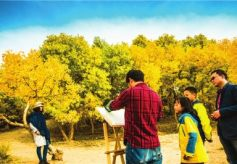 金秋10月敦煌胡杨美 塞外秋色吸引大批画家摄影师采风