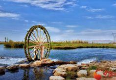 张掖国家湿地公园:诗情画意  芦花荡漾