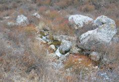 定西漳县晋家坪:寻找一条河流隐藏的远古秘密