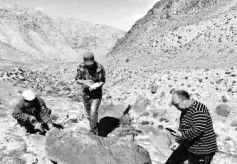 酒泉肃北大黑沟再次发现战国至汉代岩画60余幅