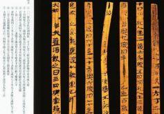 武威汉代医简:中国医籍链上重要一环