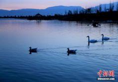 张掖国家湿地公园美景