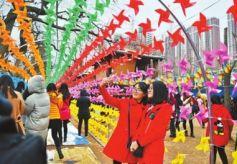 首届国际七彩风车文化节在兰开幕