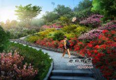 """甘肃兰州:3000亩""""南山花海""""如画"""