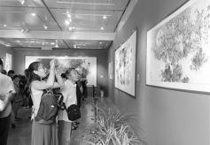 甘肃艺术大家陈伯希作品回顾展在省博物馆开幕