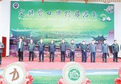2017年甘肃陇南文县碧口乡村旅游节开幕