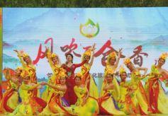 第六届甘肃兰州百合文化旅游节开幕