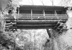 甘肃康县团庄龙凤桥:西北古廊桥艺术的美丽遗存