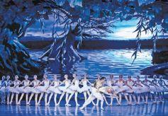 甘肃兰州上演经典芭蕾舞剧《天鹅湖》