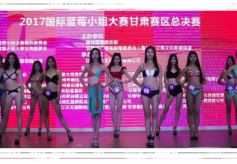 国际蓝莓小姐大赛甘肃赛区总决赛圆满成功