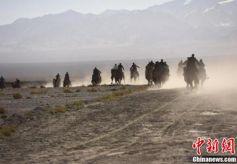 甘肃戈壁小城办骆驼文化节