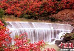 甘肃灵官峡秋日峭壁遍红叶 山间水潺潺