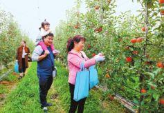 甘肃庆阳宁县创新发展县域经济侧记