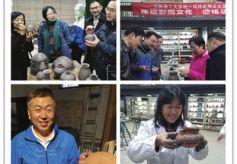 甘肃省兰州理工大学举办彩陶文化体验活动
