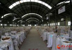 甘肃省陇西县:中药材产业带动县域经济发展
