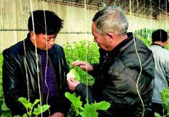 甘肃省酒泉玉门市冬季集中教育如火如荼