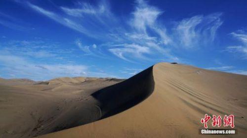 冬日的大漠中,一棵树木枝叶凋零。 朱文鑫 摄