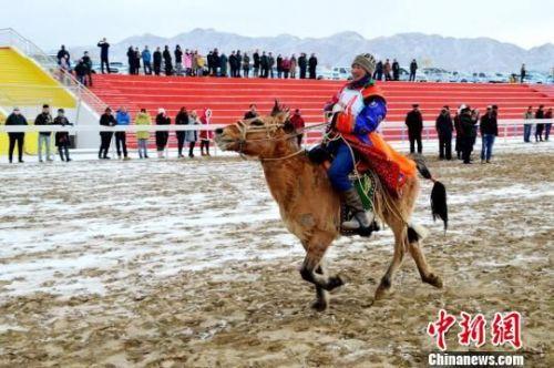 寒冷不能阻挡奔腾的骏马,白雪激起骑手的热情,观看比赛的观众不惧寒冷,欢呼声、鼓掌声此起彼伏。 佟格勒格 摄