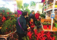 甘肃兰州:花卉市场节后价低销量好