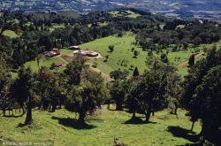 """兰州打出生态建设组合拳 城区多元增绿郊野造林""""护肺"""""""