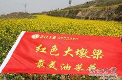 甘肃·会宁第二届油菜花文化旅游节开幕