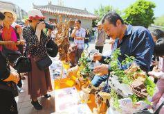 甘肃平凉市举行文化和自然遗产日活动