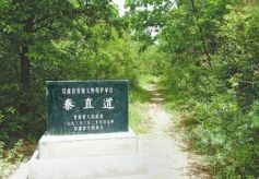 甘肃境内的古代重要军事要道秦直道