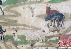 敦煌石窟文献中古人吃秋食的养生之道