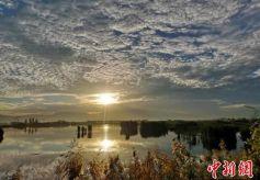 甘肃戈壁绿洲的美景剪影