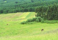 走进甘肃美景之地祁连山深处寻觅不一样的美景