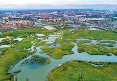 """张掖国家湿地公园似""""江南水乡"""""""