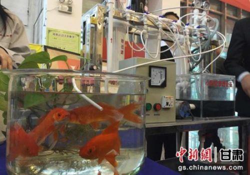 图为甘肃职业院校学生创新研发成果展。(资料图)刘玉桃 摄