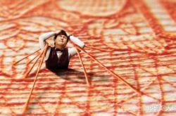 中国·嘉峪关国际短片电影展将于9月28日至30日举办