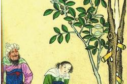 古丝绸之路促进了中国古代医术水平的提高