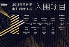 2018优秀青年导演项目评选活动15部巧思之作最终确定入选