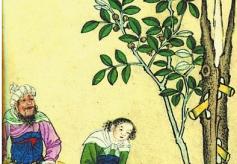 王杰珍藏书画精品展在甘肃省艺术馆举行