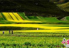 民乐县审时度势开启休闲观光农业和乡村旅游大发展的新篇章