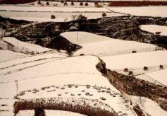 大雪覆盖黄土塬上的梯田宛如水墨画