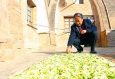 甘肃省庆阳市西峰区大力开发乡村旅游